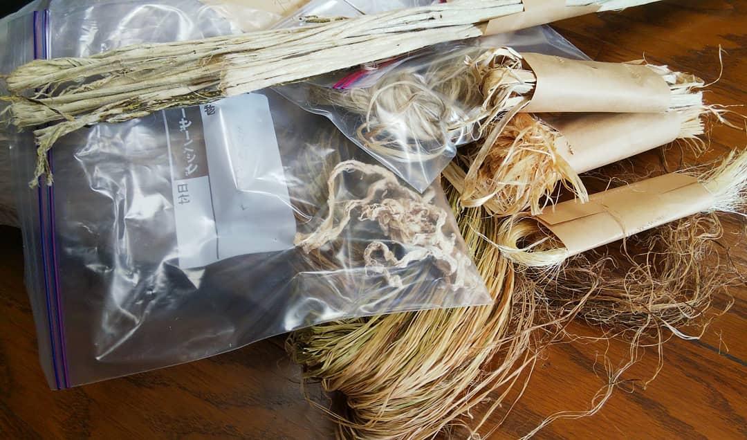 和紙の原料となる楮・雁皮・麻類(苧麻・紅麻・剣麻・サイザル麻など)